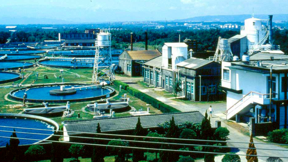 taiwan chlorella manufacturing